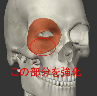 下まぶたのたるみ改善トレーニング説明画像