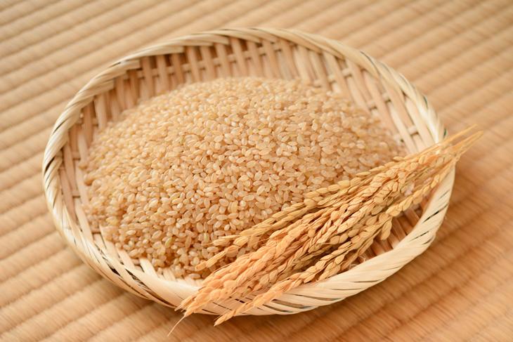 玄米の画像